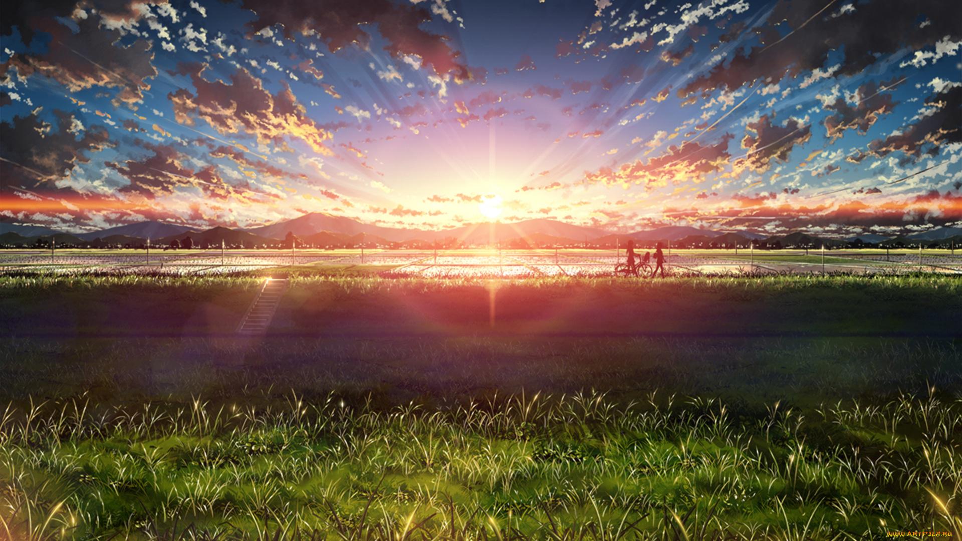 аниме, закат, цветочная поляна на телефон