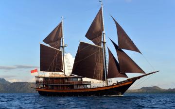 Картинка корабли парусники водоем флаг побережье облака