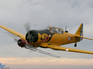Картинка авиация лёгкие одномоторные самолёты
