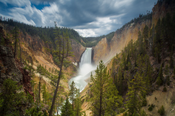 Картинка природа водопады canyon junction wyoming usа lower falls yellowstone national park водопад скала лес