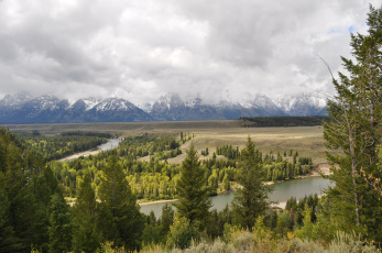 Картинка grand teton national park wyoming природа пейзажи лес река