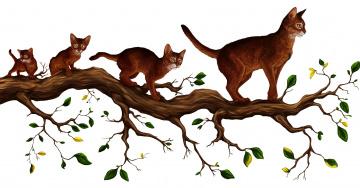 Картинка рисованное животные +коты кошки ветка