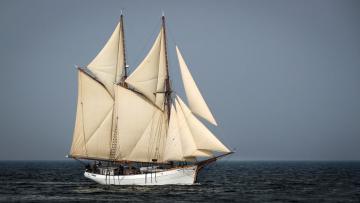 Картинка корабли парусники мачты море
