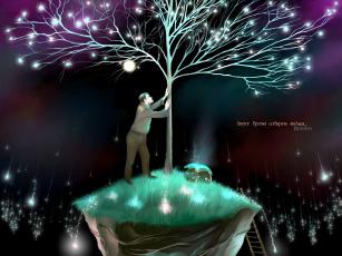 Картинка август время собирать звезды рисованные другое дерево лестница человек romiro