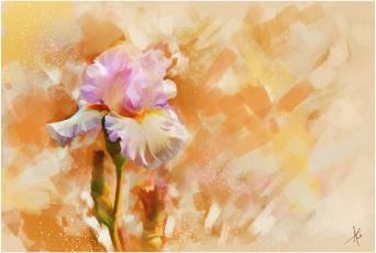 Картинка рисованные цветы ирис