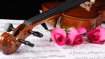 обоя музыка, -музыкальные инструменты, скрипка, ноты, розы
