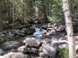 Картинка great basin national park невада природа парк ручей лес