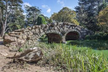 Картинка природа реки озера мост река лес арки
