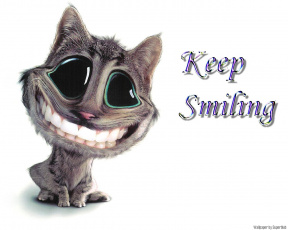 обоя keep, smiling, for, lovely, ladies, юмор, приколы