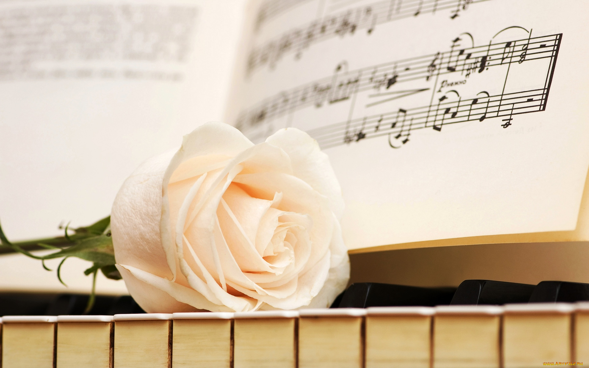 Открытки с музыкальным приветствием