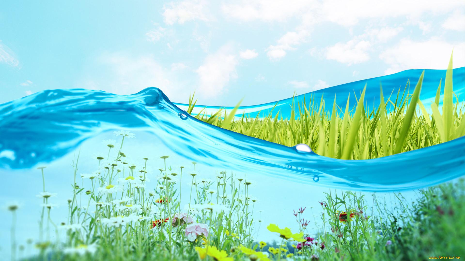 том, картинки небо трава вода вам рецепт