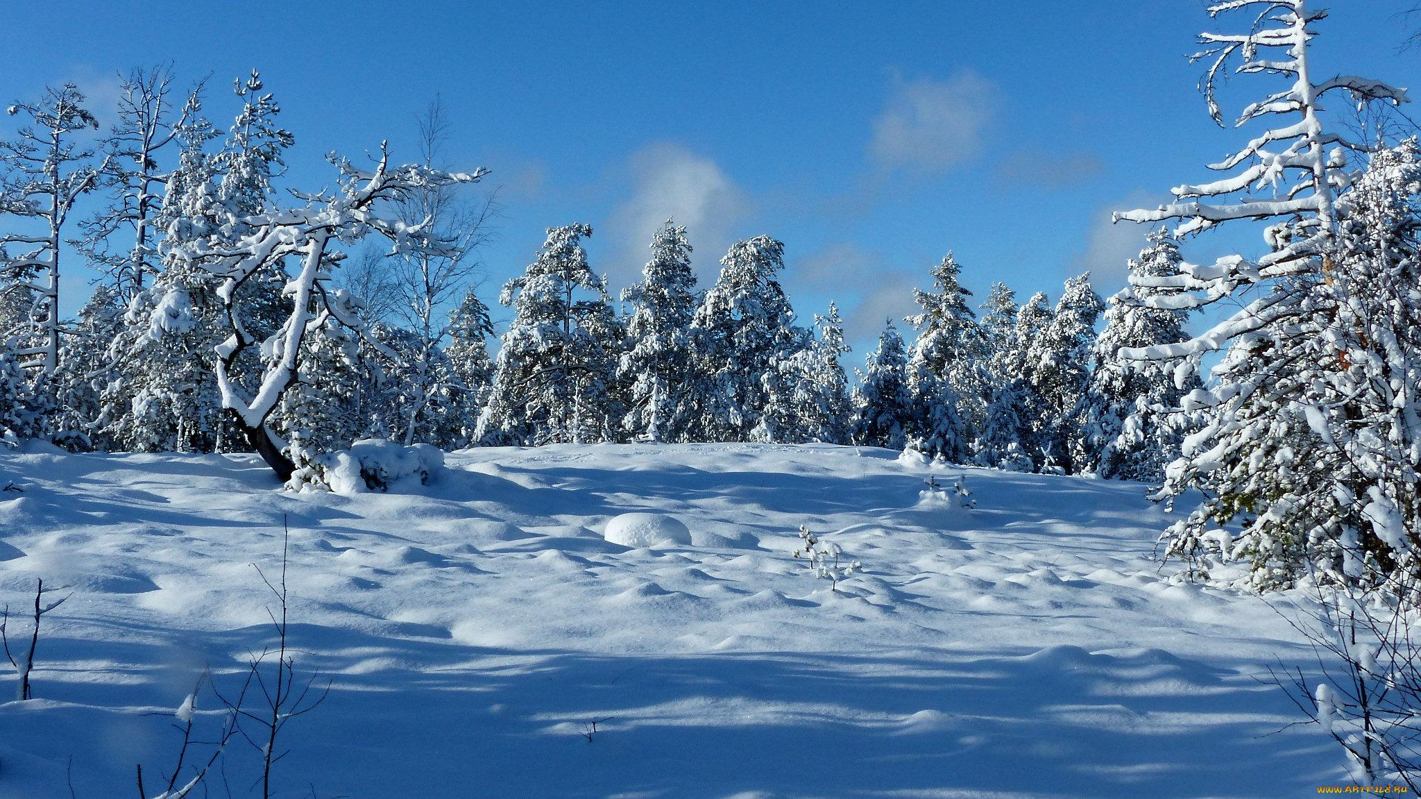 фото картинки на телефон зима клапан