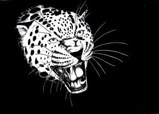 Картинка рисованное животные +ягуары +леопарды голова хищник зверь рев ягуар