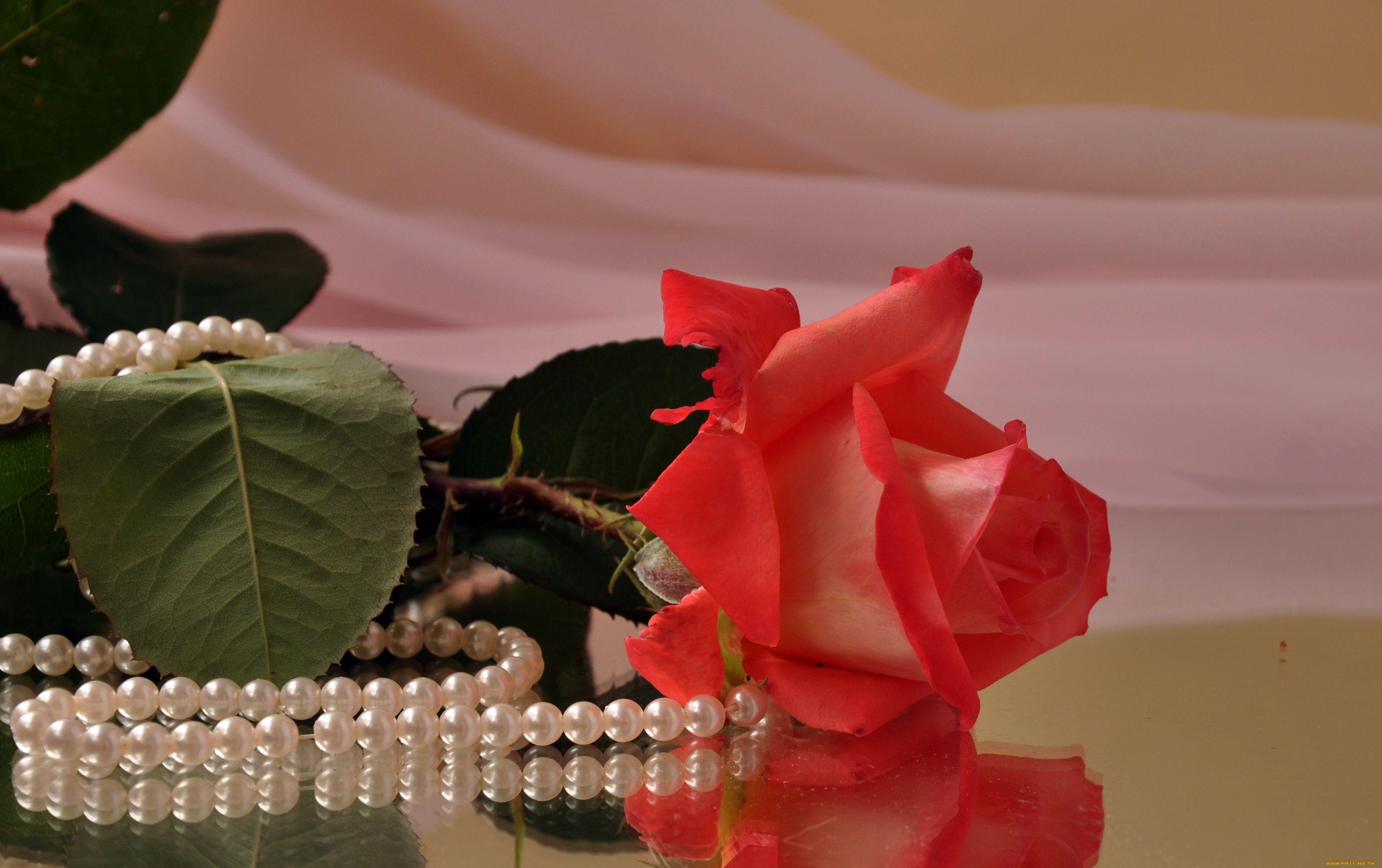 Открытки розы и жемчуг