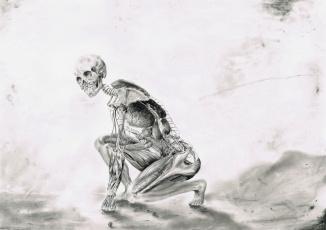 Картинка рисованное абстракция скилет фон взгляд