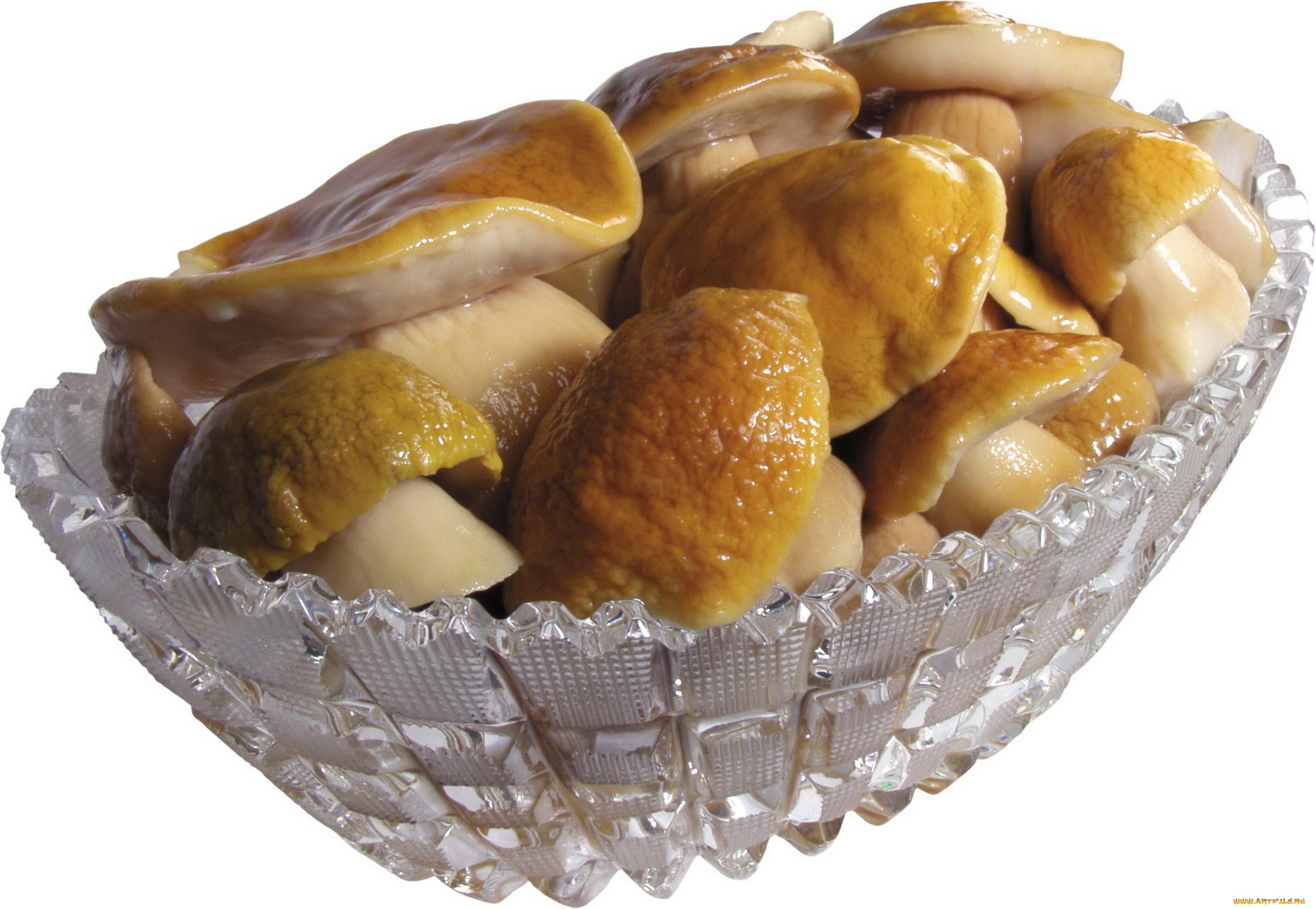 еда грибы food mushrooms бесплатно