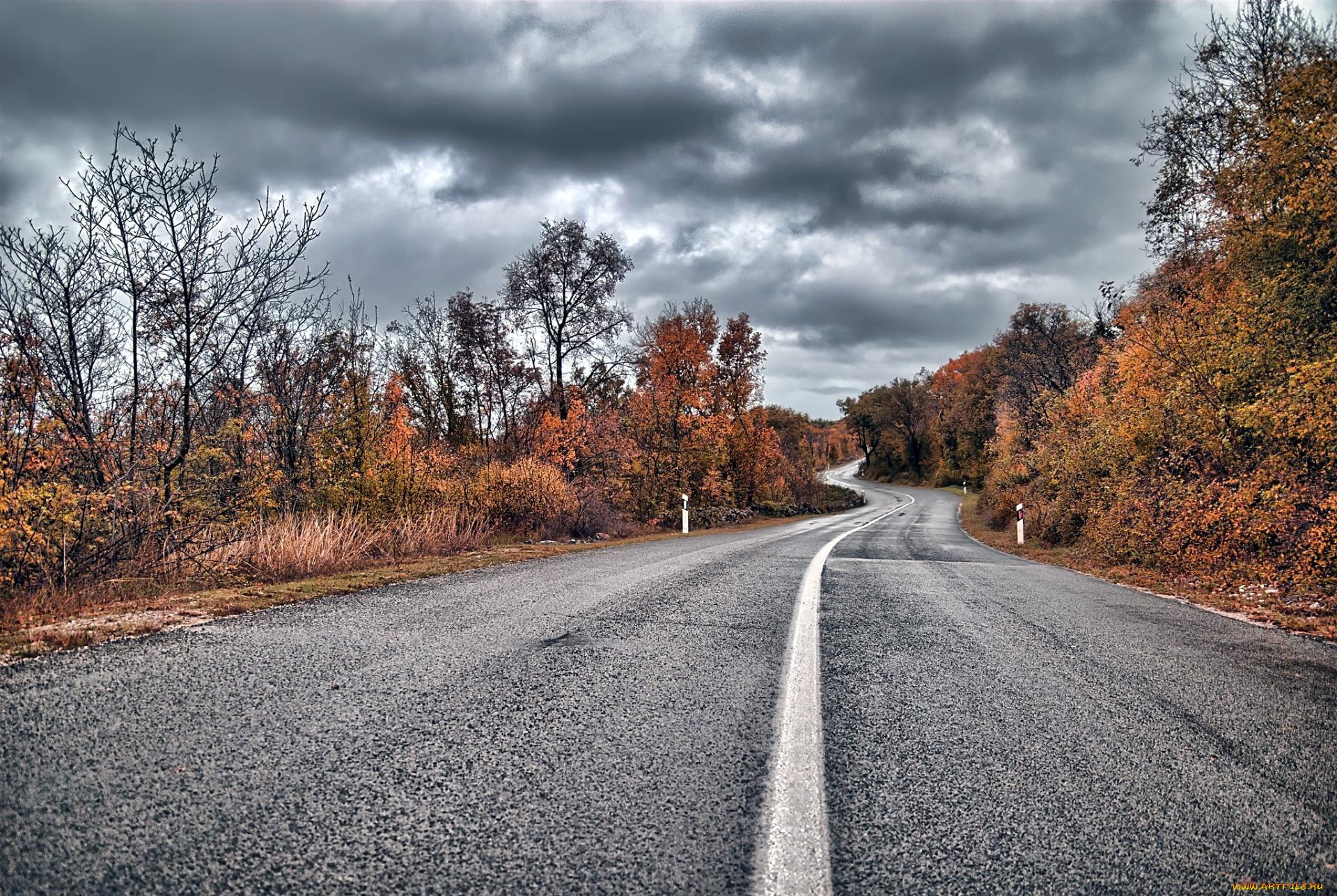 фотографии осень дороги зрителя телеведущая