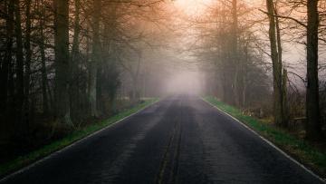 Картинка природа дороги туман дорога утро