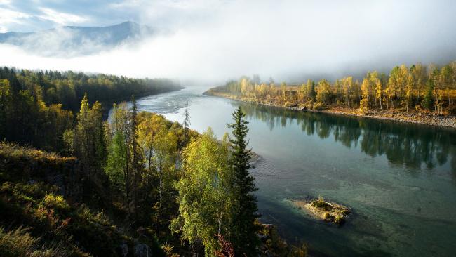 Обои картинки фото природа, реки, озера, лес, река