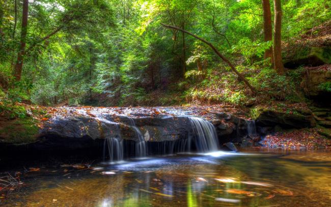 Обои картинки фото природа, водопады, лес, поток, камни