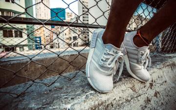 обоя бренды, adidas, кроссовки