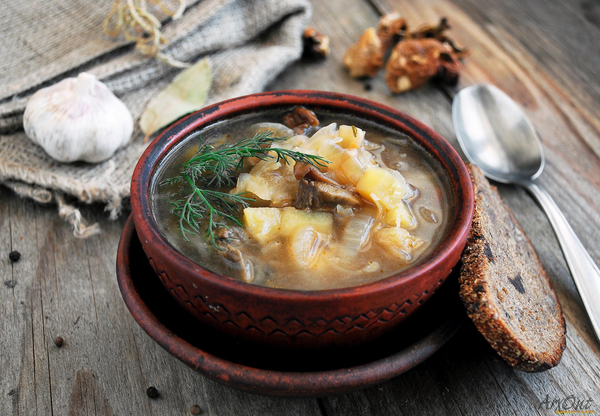 Щи с грибами и свежей капустой рецепт пошагово