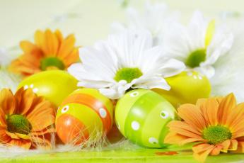 обоя праздничные, пасха, белые, оранжевые, яйца, цветы