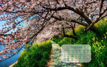 обоя календари, природа, дерево