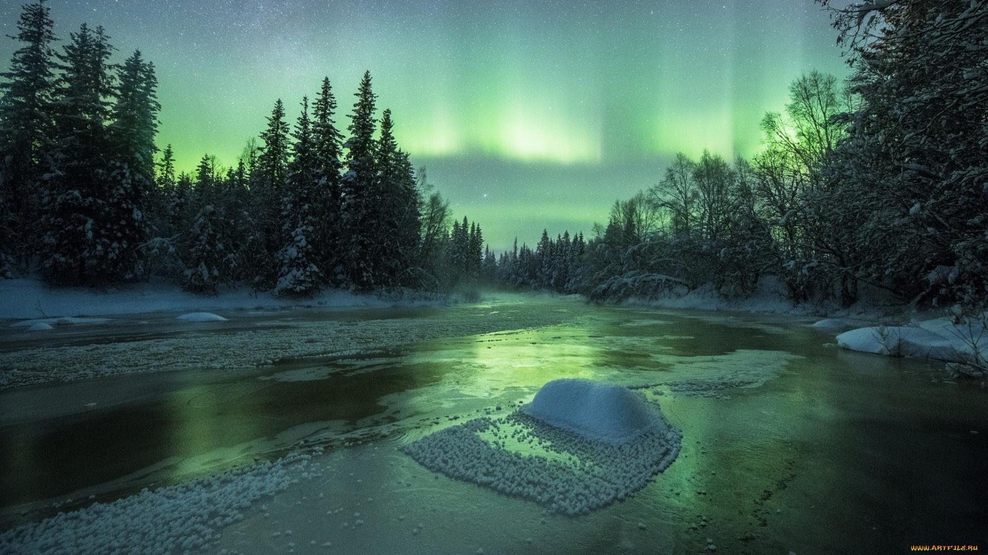северное сияние сугробы лес без смс