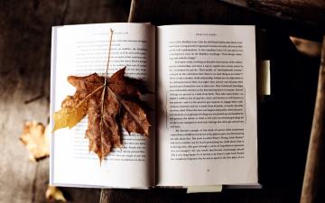 обоя разное, канцелярия,  книги, лист, книга