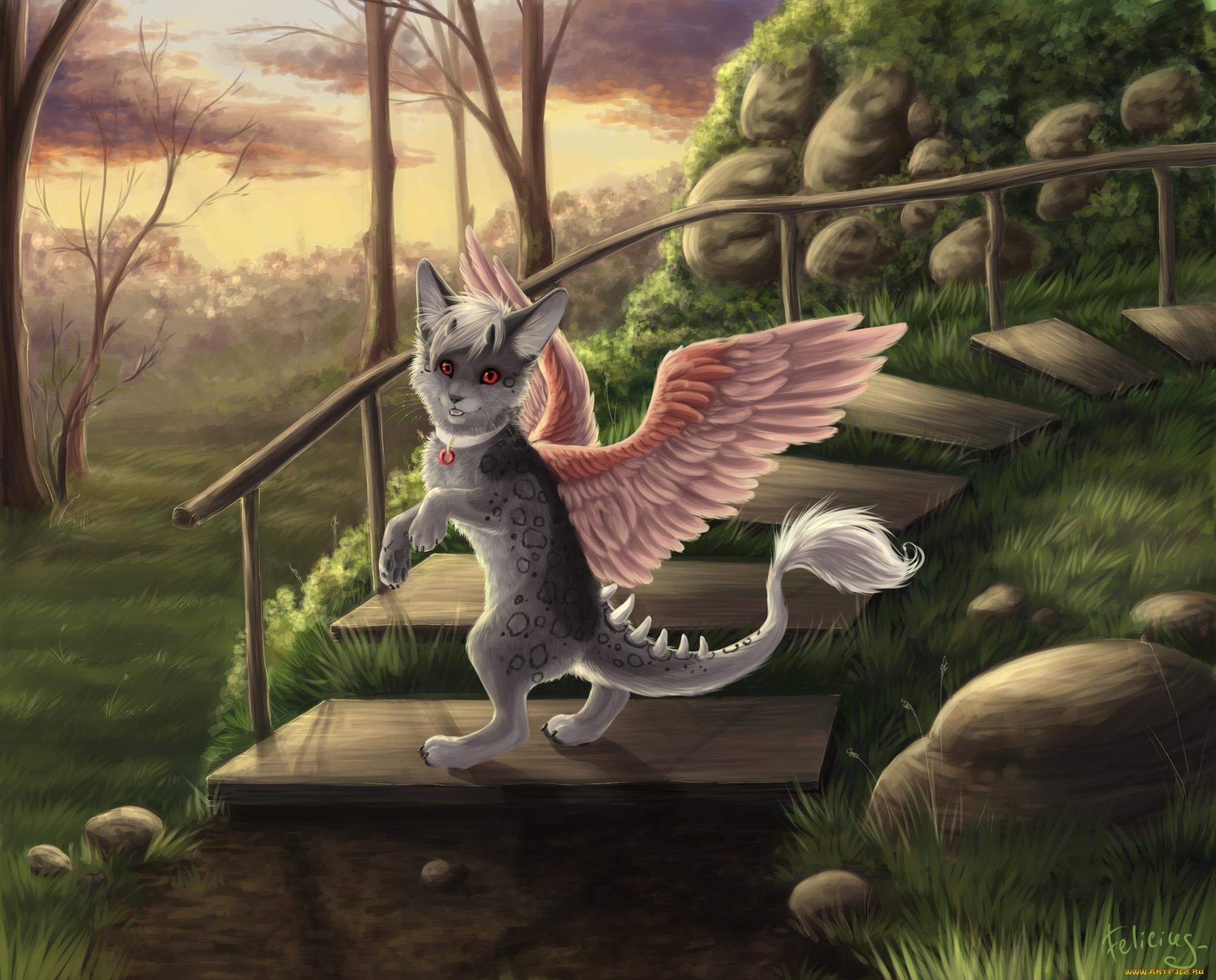 волшебные коты с крыльями картинки гранитный