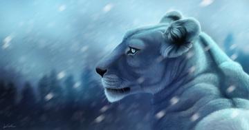 обоя рисованное, животные,  львы, фон, размытие, хищник, рисунок, львица, арт