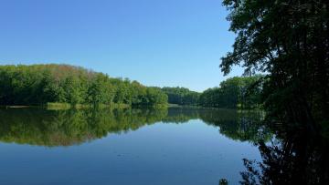 Картинка природа реки озера небо лес озеро