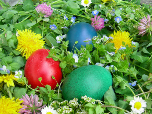 обоя праздничные, пасха, цветы, яйцо