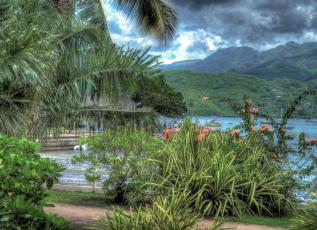 обоя природа, тропики, облака, растения, горы, деревья, пальма, водоем