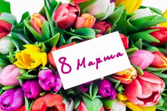 обоя праздничные, международный женский день - 8 марта, тюльпаны, цветы