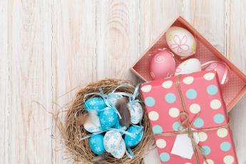 обоя праздничные, пасха, яйцо, перья, гнездо, коробка