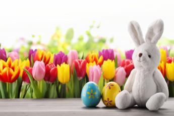 обоя праздничные, пасха, яйцо, заяц, тюльпаны