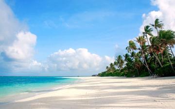 обоя природа, тропики, пальмы, пляж, море, остров, отдых