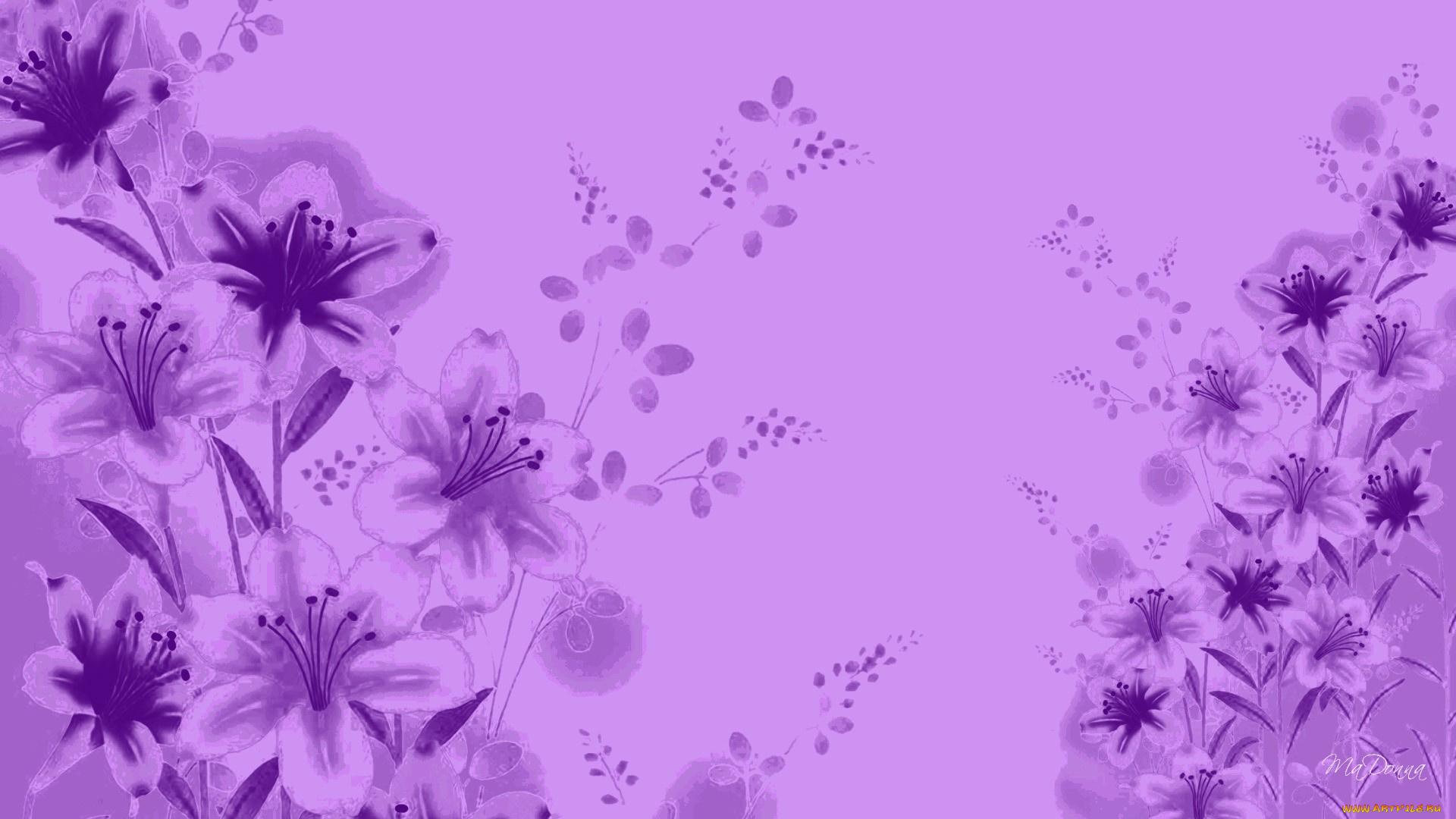 lavender background color - HD1920×1080
