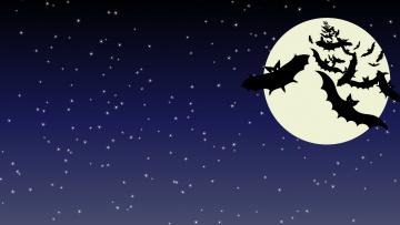 обоя праздничные, хэллоуин, фон, летучая, мыш
