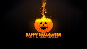 обоя праздничные, хэллоуин, тыква