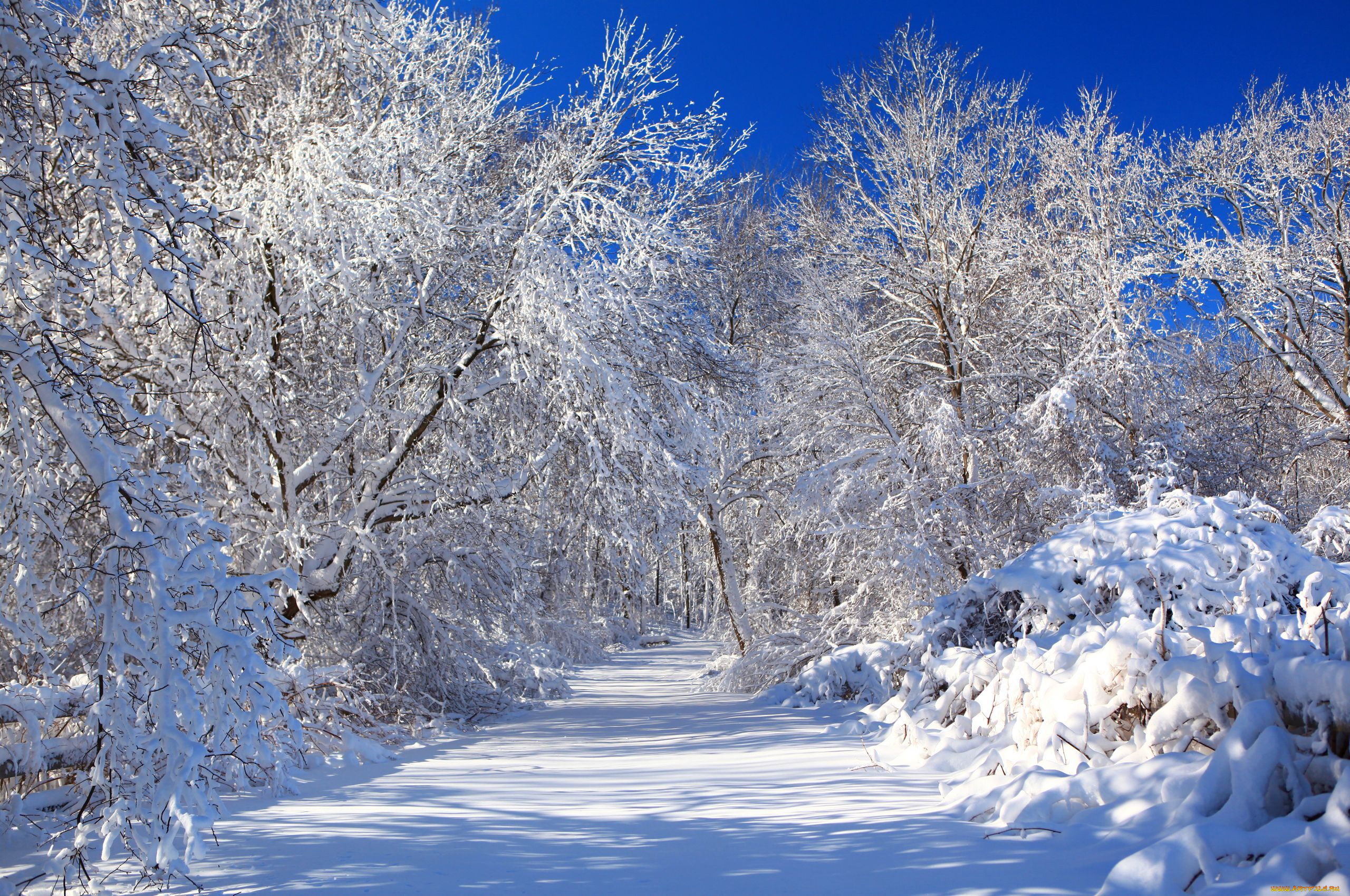 Обои На Тему Зима На Рабочий Стол
