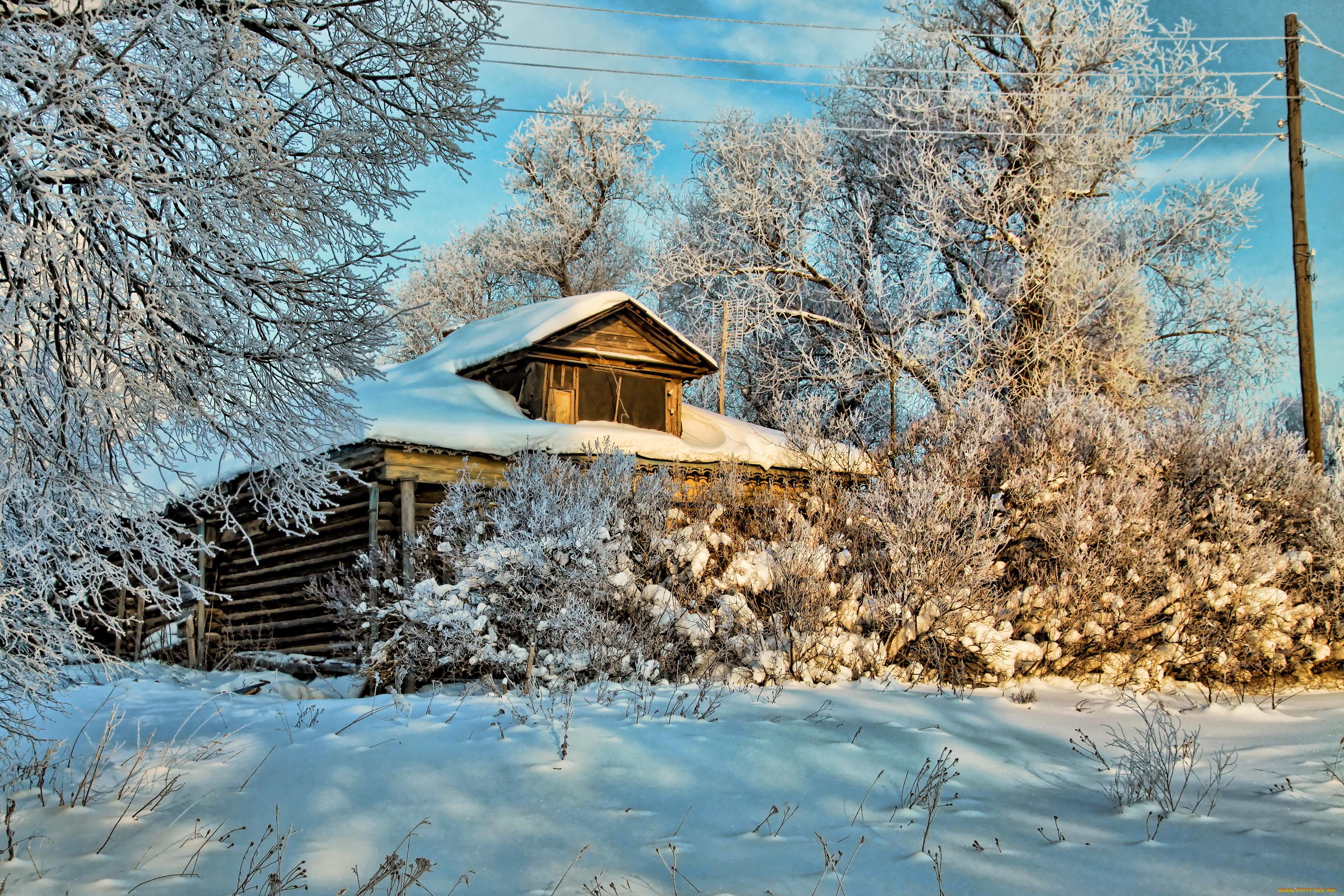 природа снег деревья дом nature snow trees the house бесплатно