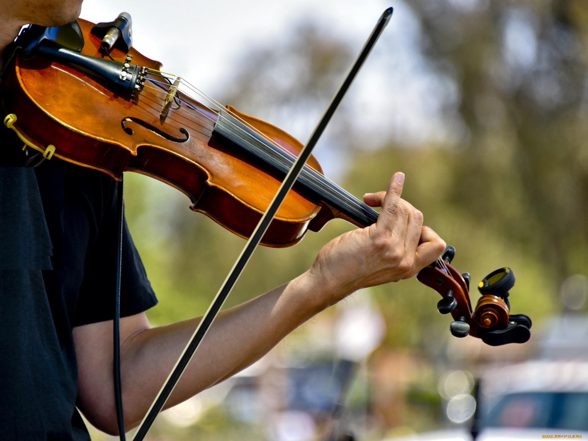 Картинки скрипачей и скрипок, подписать открытку