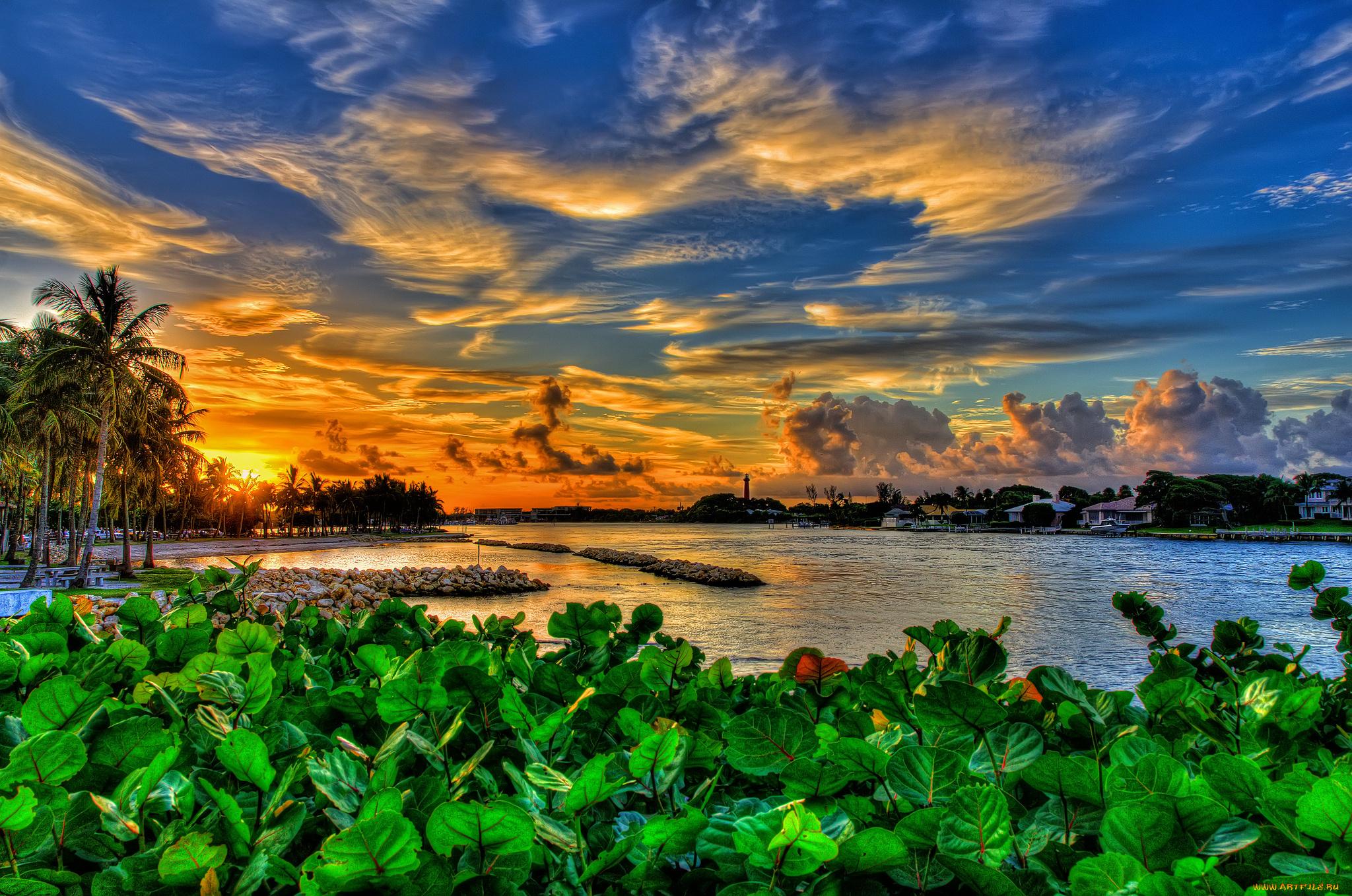 Озеро во Флориде загрузить