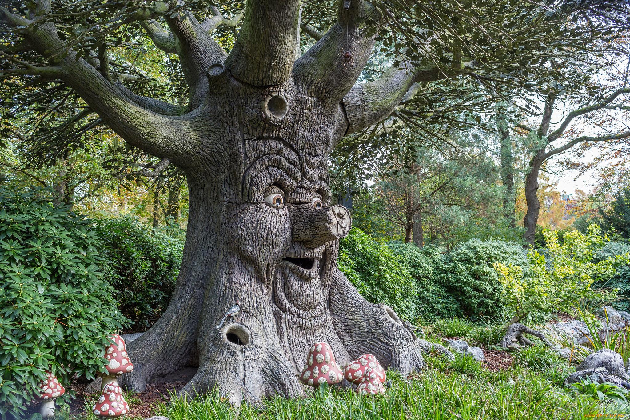 сказочные деревья фото существует