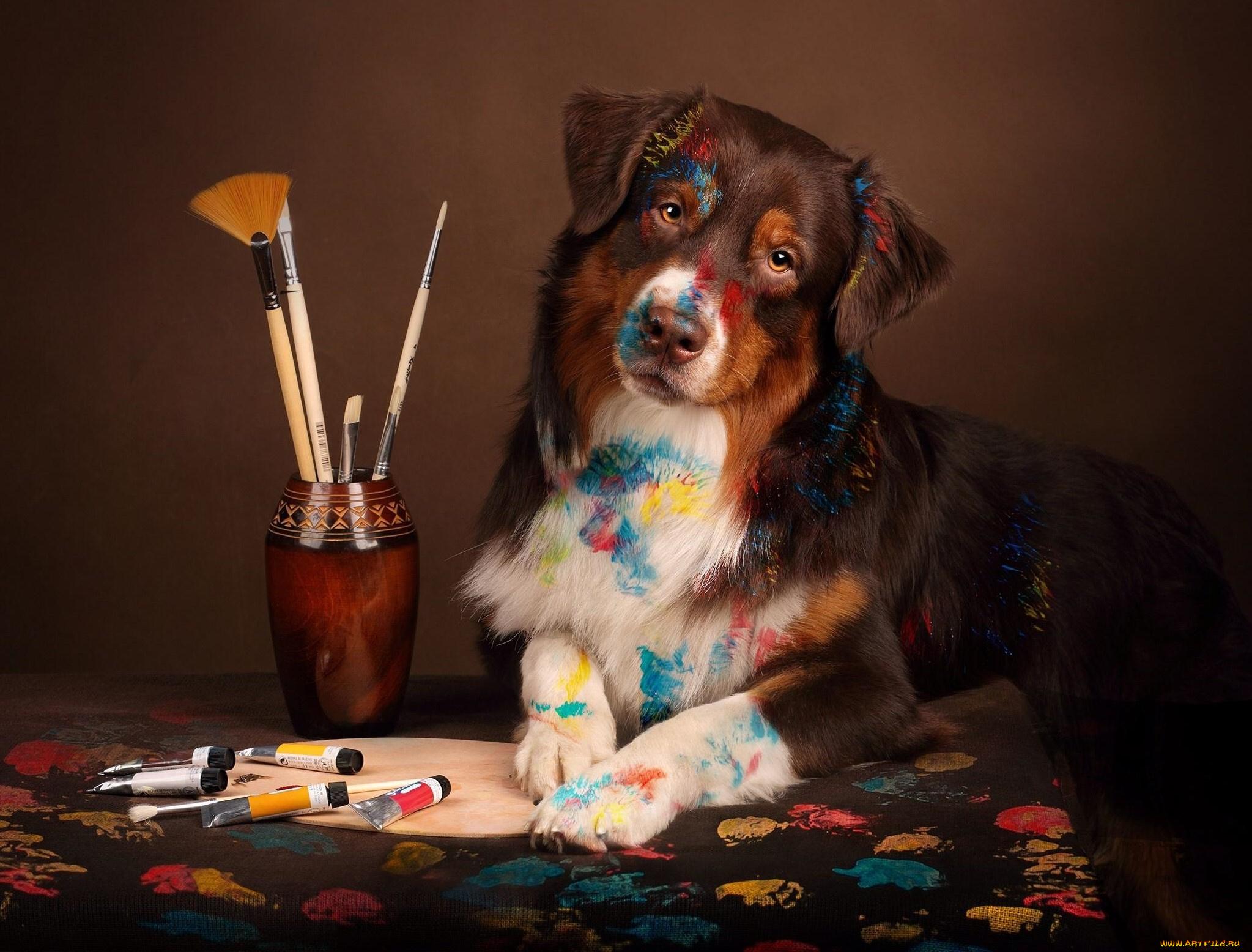 подкаминская картинка собака с микрофоном самостоятельно весь