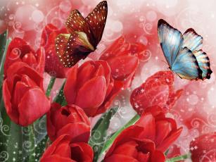 обоя разное, компьютерный дизайн, весна, тюльпаны, бабочки