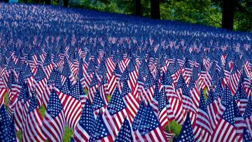 обоя разное, флаги,  гербы, много, америка